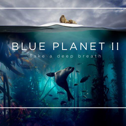 Planeta Azul II